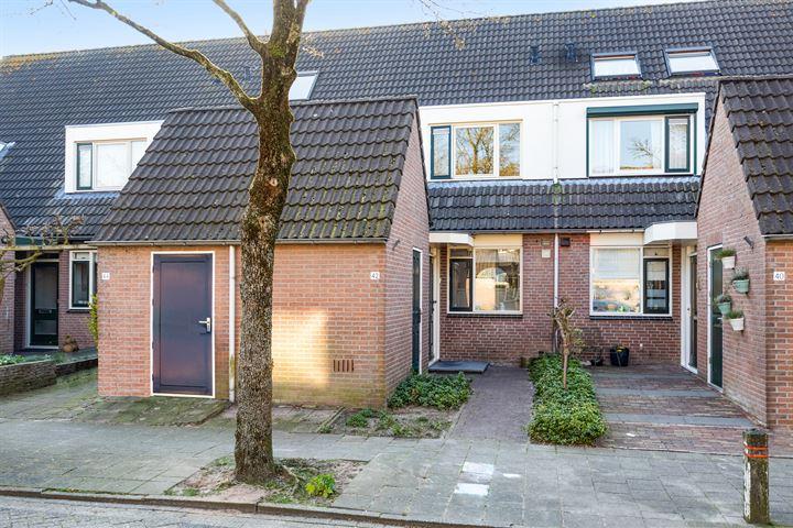 Ruisdaelstraat 42