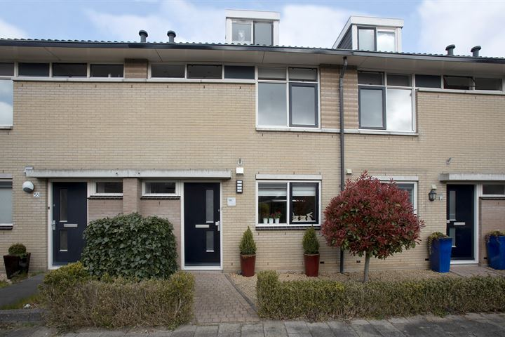 Van Gochstraat 60