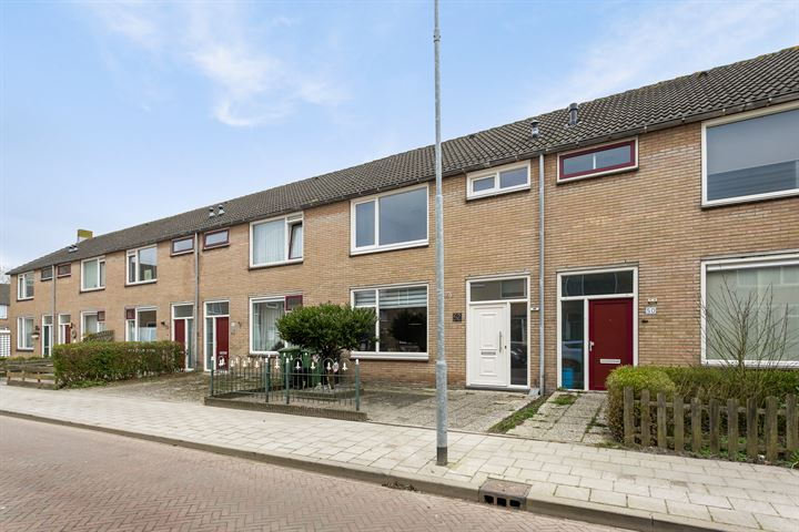 Biesbosstraat 52
