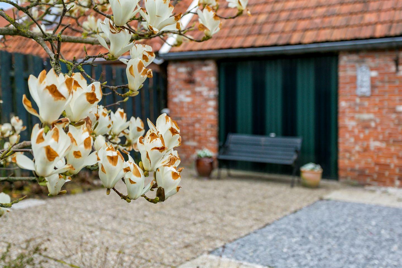 Bekijk foto 2 van Voorstraat 8