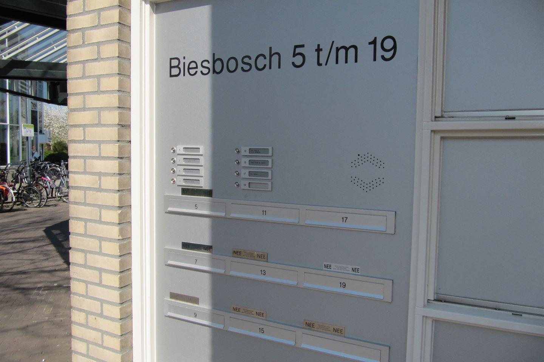 Bekijk foto 2 van Biesbosch 7
