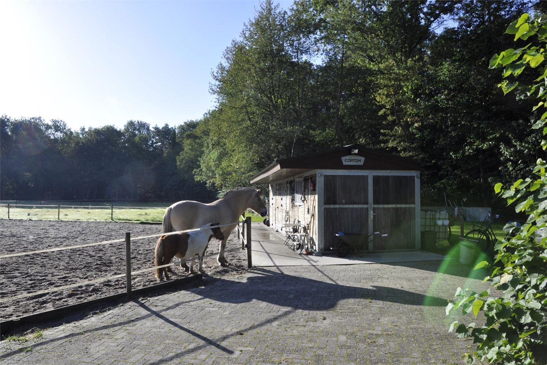 Bekijk foto 5 van Gijsselterweg 15