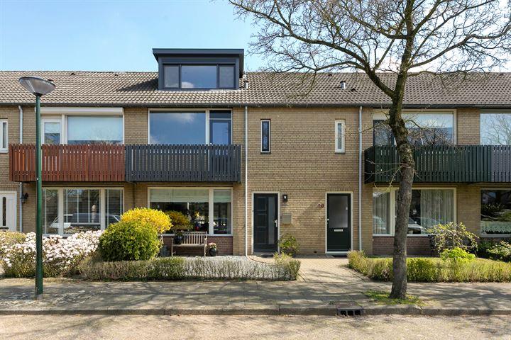 Colijnstraat 22