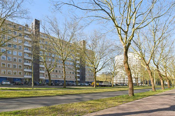 Van Nijenrodeweg 385