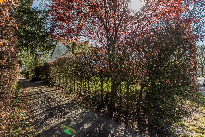 Bekijk foto 4 van Lutsborgsweg 24