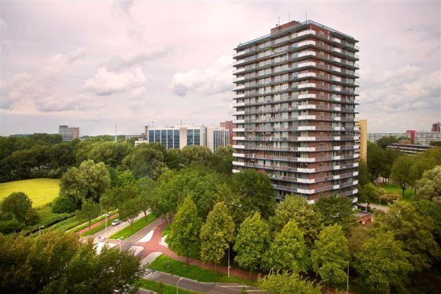 Bekijk foto 4 van Dunantstraat 1285