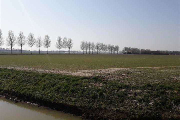 Noorder Elsweg, Dordrecht