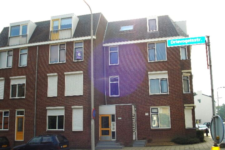 Drievogelstraat 223