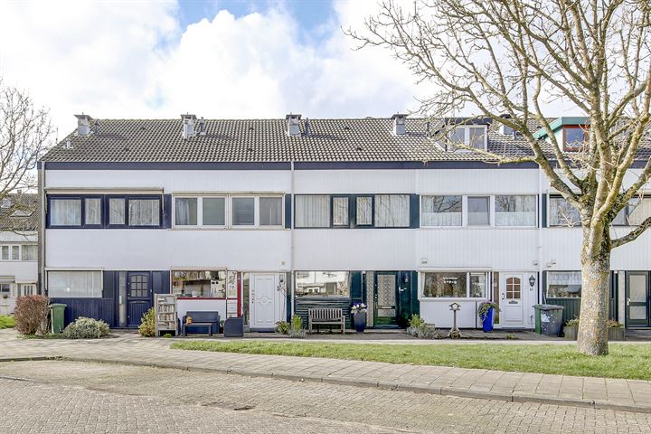 Dr. M.L. Kingstraat 79