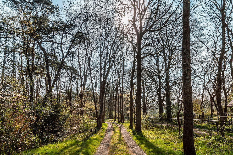 Bekijk foto 6 van Soestdijkseweg Noord 526
