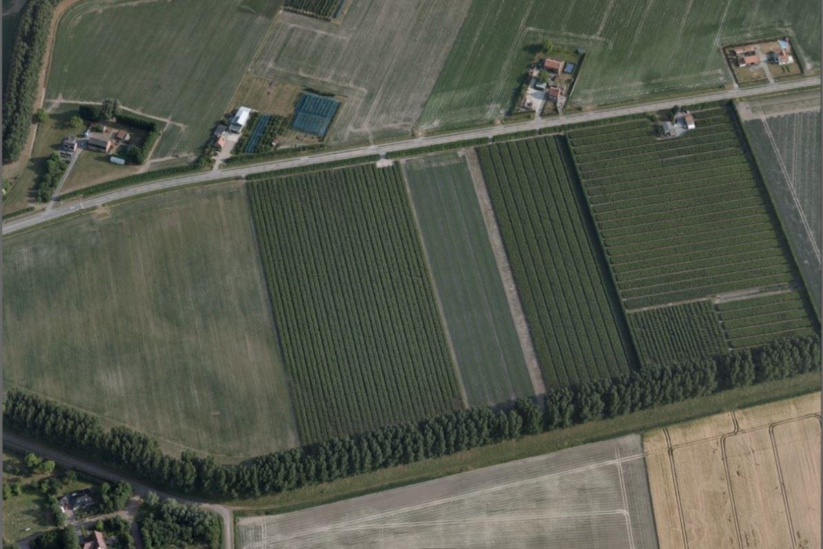 Bekijk foto 1 van Dijckmeesterweg 2 .