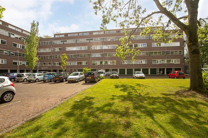 Raaphorst 163