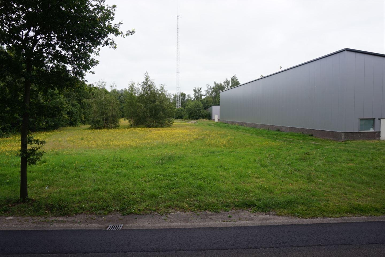 View photo 4 of Damsingel