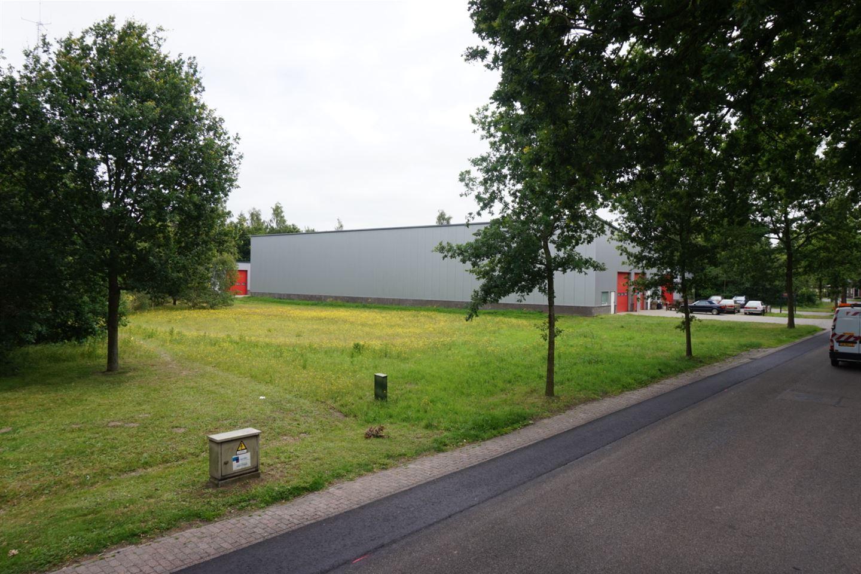 View photo 5 of Damsingel