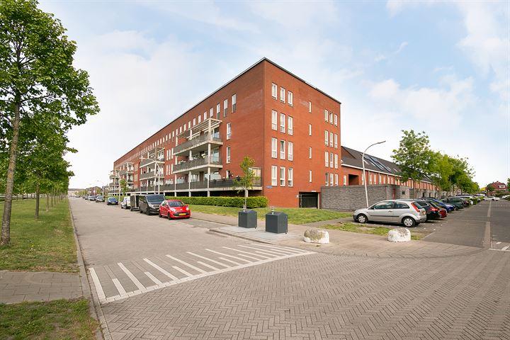 Gilze-Rijenhof 44