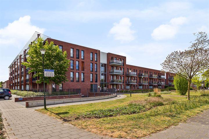 Christofoor 106