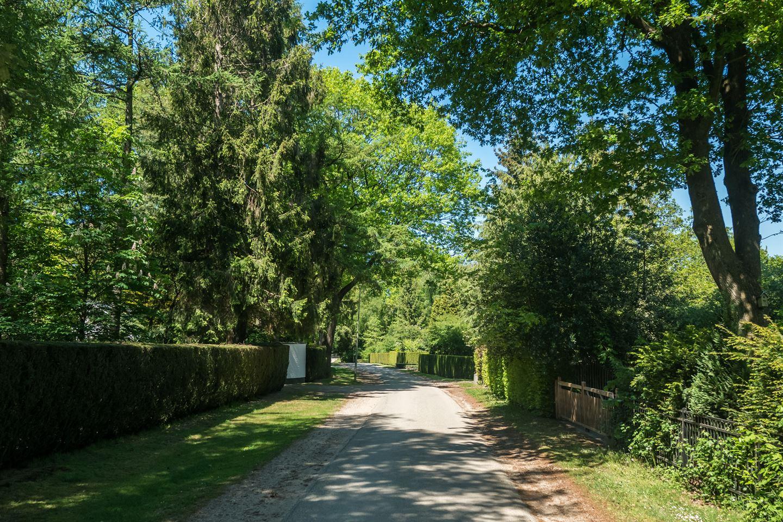 Bekijk foto 4 van Bracamonteweg 55