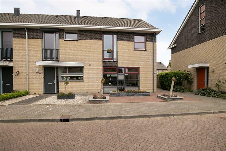 Hoogland 10