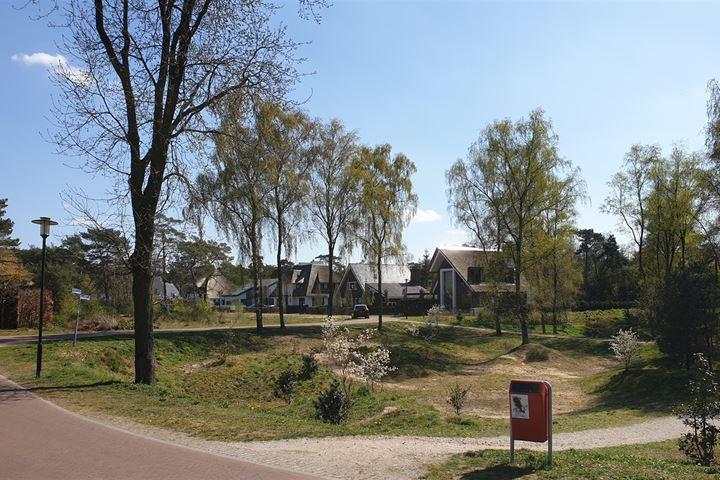 Sprielderhout fase 3