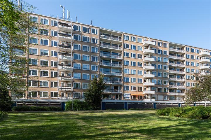 Van Nijenrodeweg 788