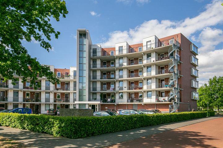 Oldenallerhout 124