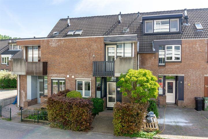 Ruigenburg 58