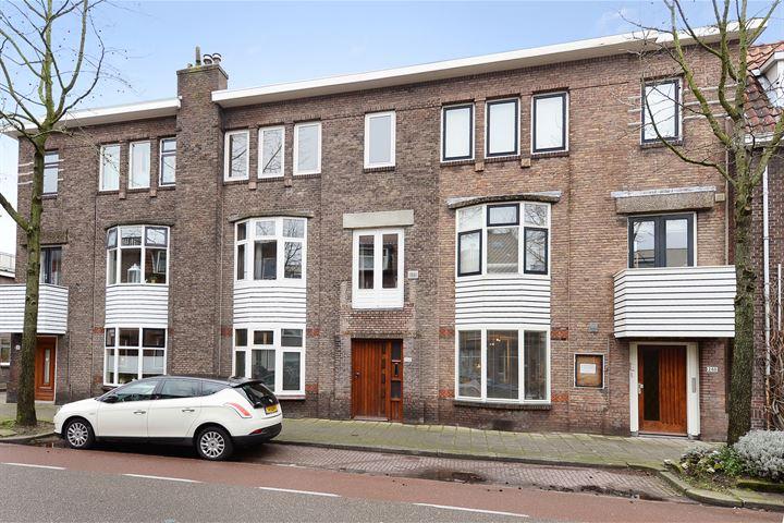Hugo de Grootstraat 250
