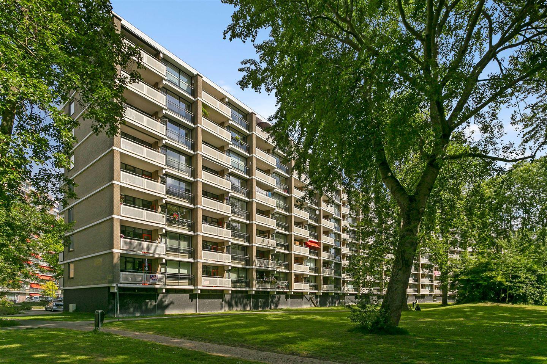 Bekijk foto 1 van Jan Luykenlaan 252