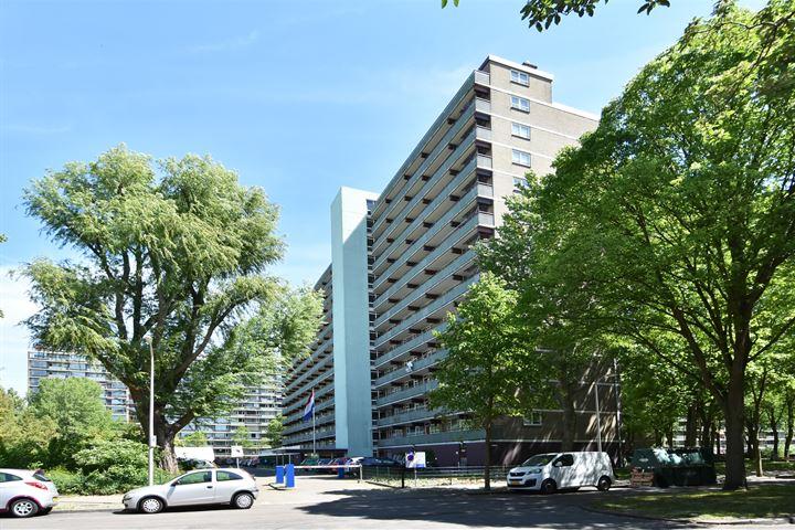 Nieuwendamlaan 252