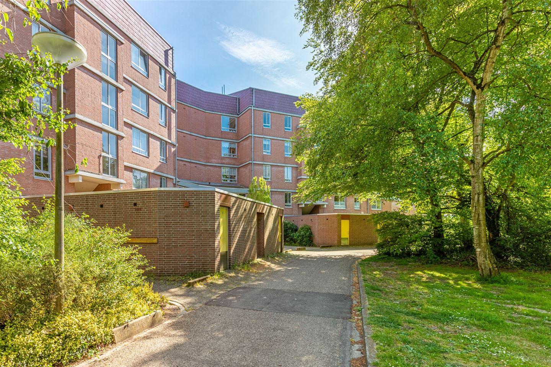 Bekijk foto 1 van Leusdenhof 255