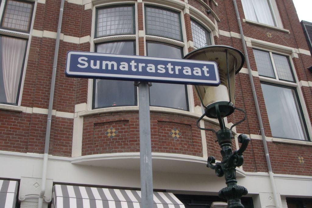 Bekijk foto 2 van Sumatrastraat 318