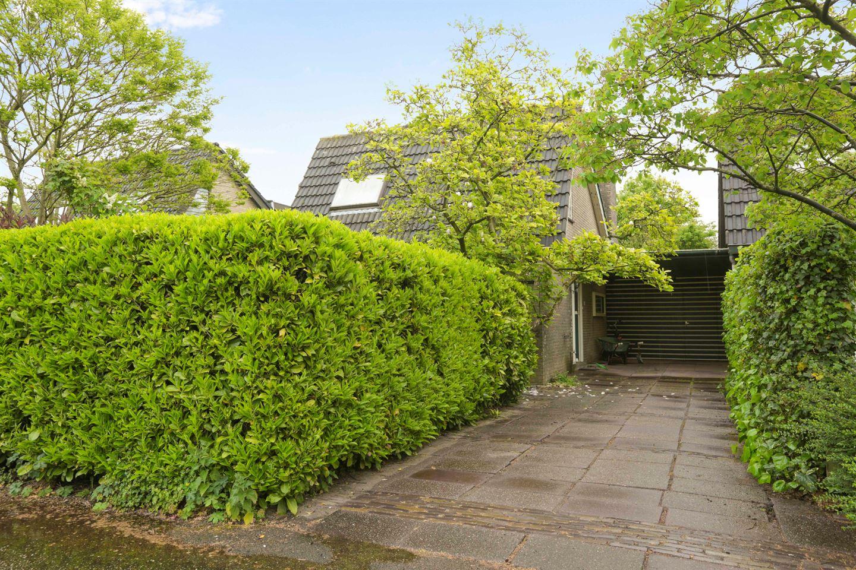 Bekijk foto 1 van Watertuin 12