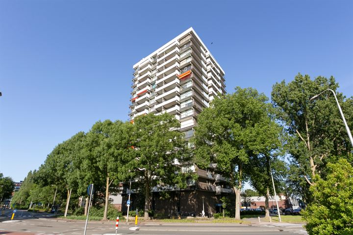 Groenhof 326