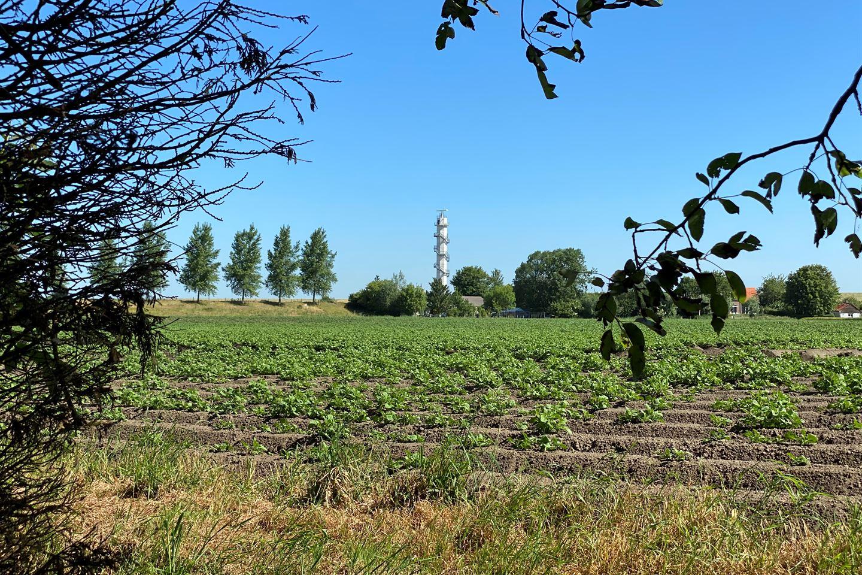 Bekijk foto 2 van Kalverdijk 8