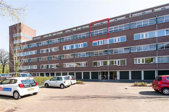 Raaphorst 141