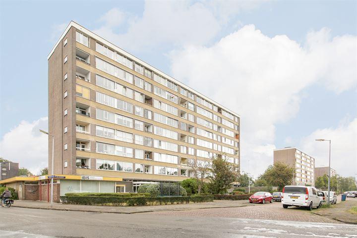 Jan van Goyenstraat 268