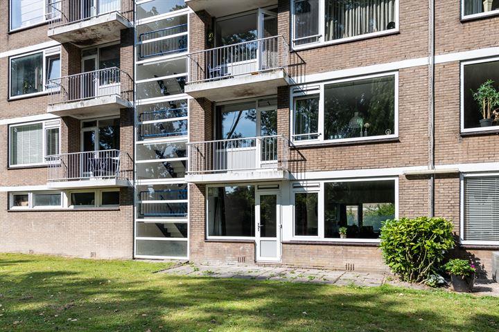 Jeroen Boschstraat 45