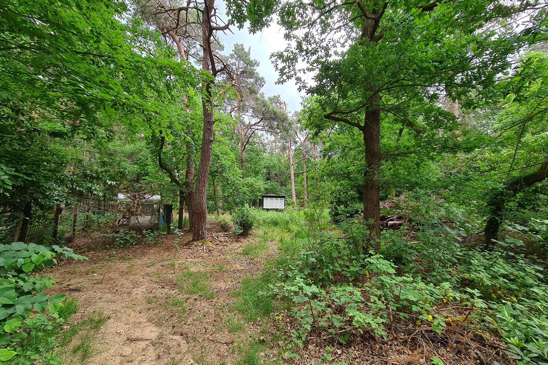 Bekijk foto 2 van Karnemelksweg 5 E