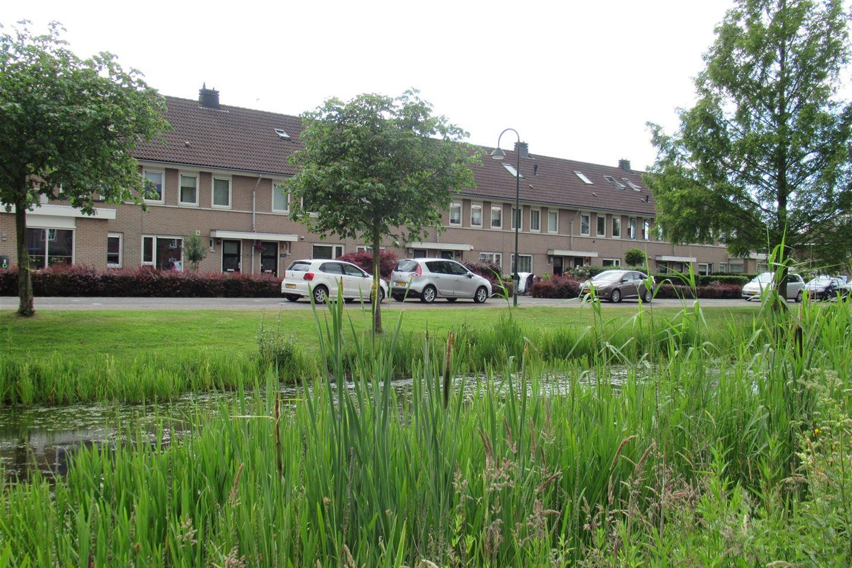 Bekijk foto 2 van Watertuin 284