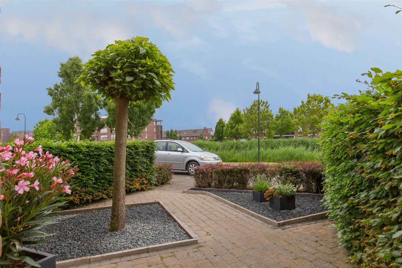 Bekijk foto 3 van Watertuin 284