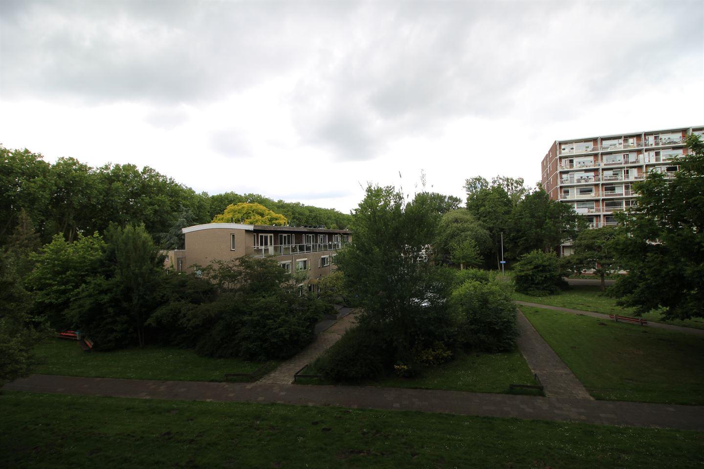 View photo 3 of Kelloggplaats 268