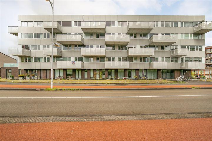 Piet Mondriaanlaan 131 F*