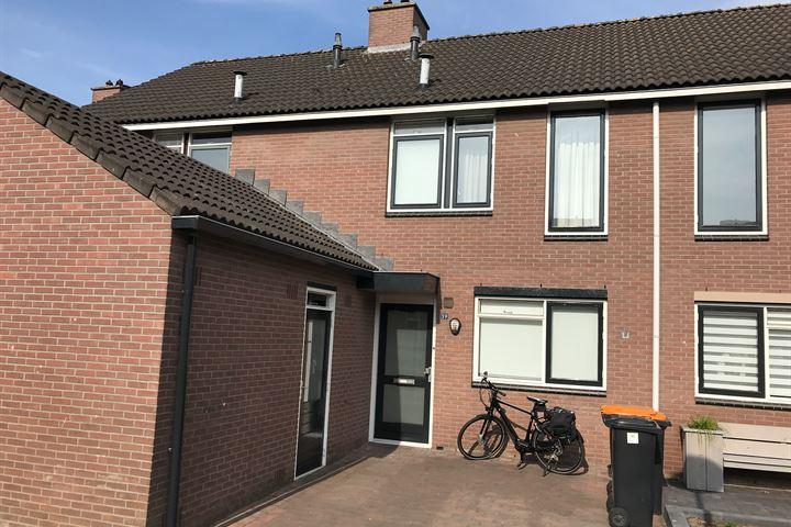 Hooiland 39