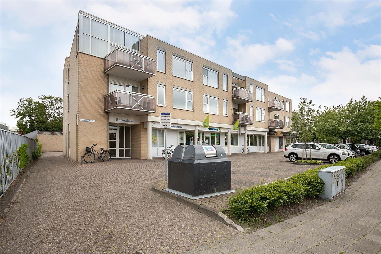 Bekijk foto 1 van Borniastraat 22