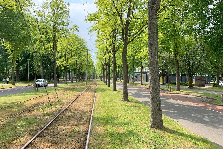 Bekijk foto 5 van Buitenhofdreef 270
