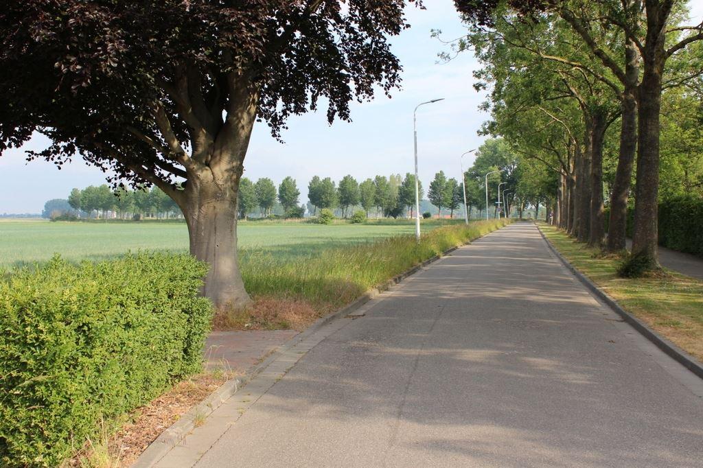 Bekijk foto 4 van Mauritsweg 12