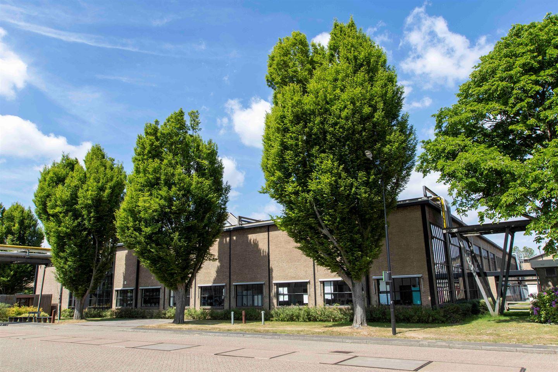 Bekijk foto 1 van Jan Campertstraat 11
