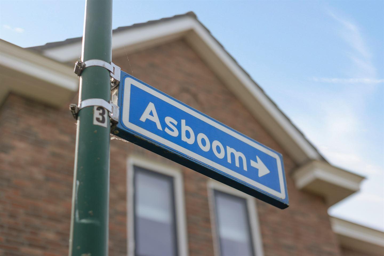 Bekijk foto 3 van Asboom 2