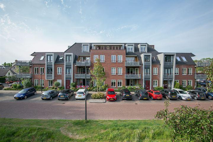 Ruysdaelstraat 53 q