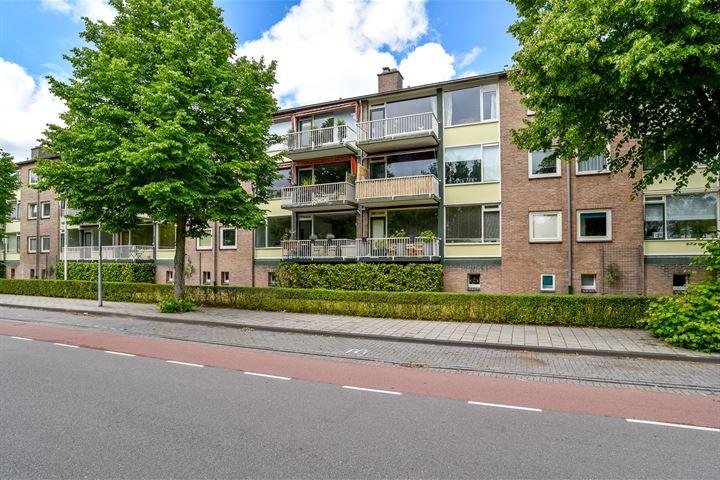 Willem de Zwijgerlaan 48